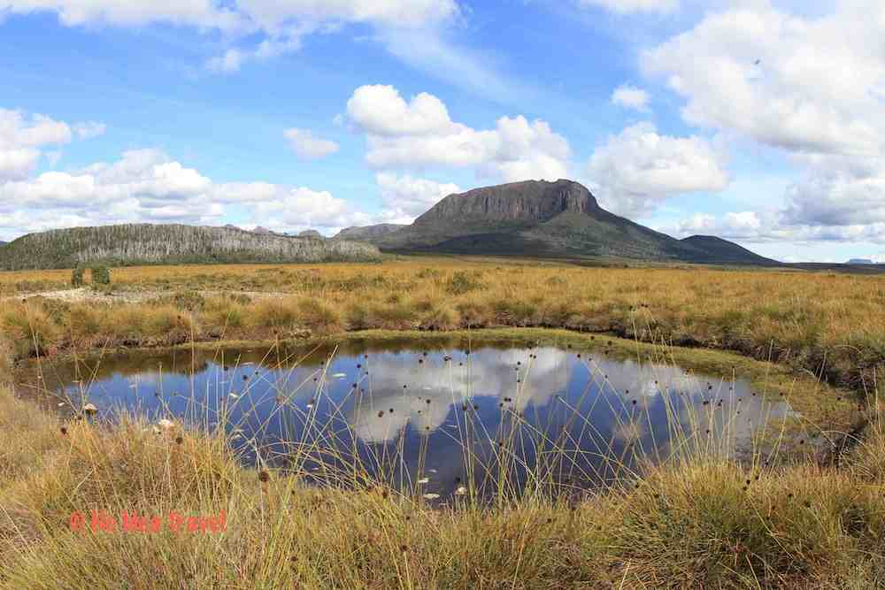 Button grasses and Alpine Tarns on the Overland Track, Tasmania