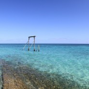 Heron Island Reef Adventure
