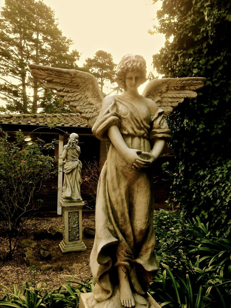 An Angel or two, Berida Manor, Bowral, NSW, Australia.