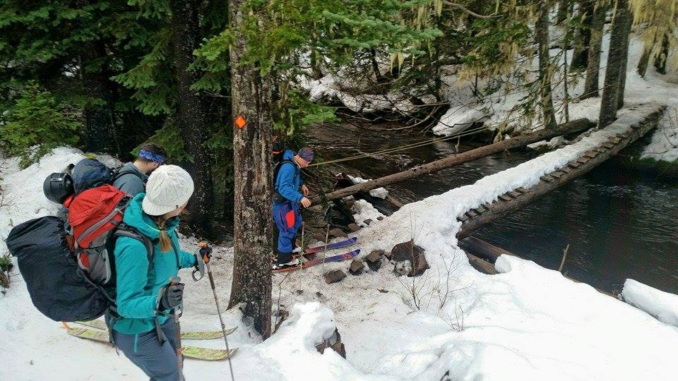 Not for the faint hearted. A ski bridge in the back country, Squamish, Canada.