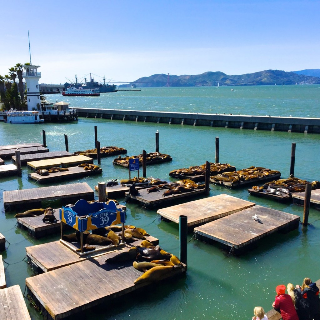Pier 39, Fishermans Wharf, San Francisco, California, USA.