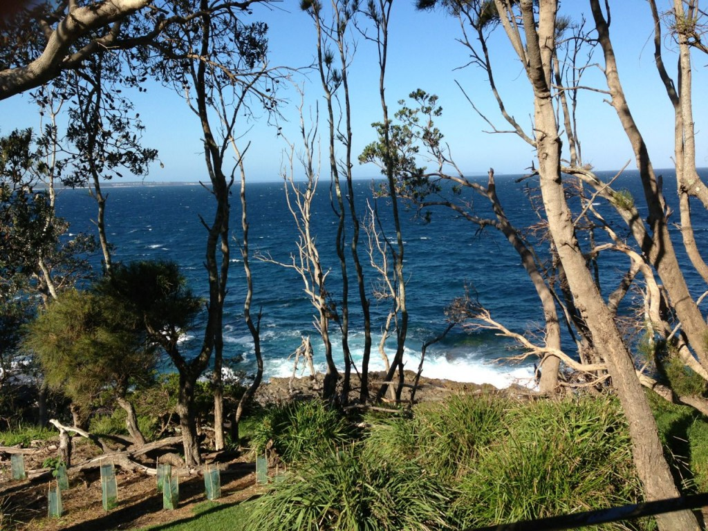 Room with a view, Bannisters by the Sea, Mollymook NSW Australia.